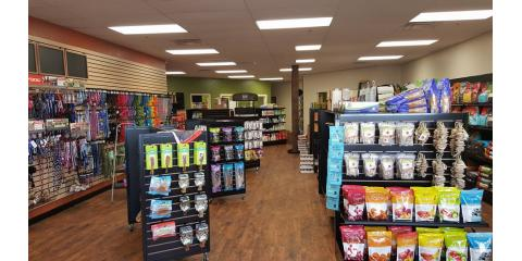 Set up for Summer With These Must-Have Pet Supplies, Middletown, Ohio