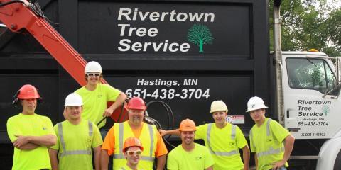 Rivertown Tree Service LLC, Tree Service, Services, Hastings, Minnesota