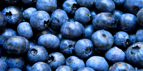 3 Foods That Help Fight Inflammation! , Crystal, Minnesota