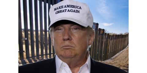 TAKE POLL:TRUMP'S MILITARY BORDER PLAN?, ,