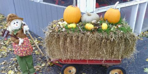 Happy Halloween , Englewood, Ohio