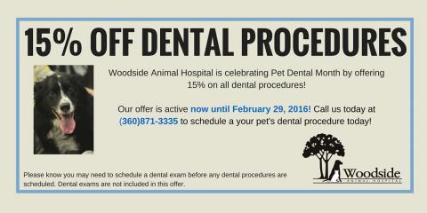 Pet Dental Month Special , Port Orchard, Washington