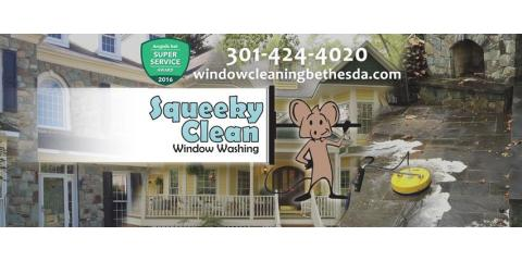 Squeeky Clean Window Washing, Window Washing, Services, Bethesda, Maryland
