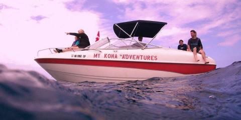 Your Guide to Hawaiian Whale Tours , Kailua, Hawaii