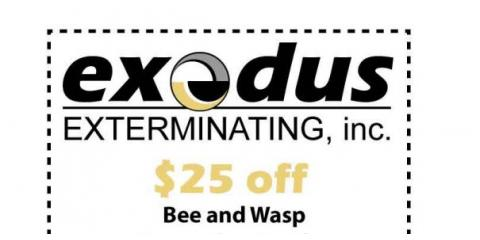 Receive $25 Off Any Bee and Wasp Service, Greece, New York