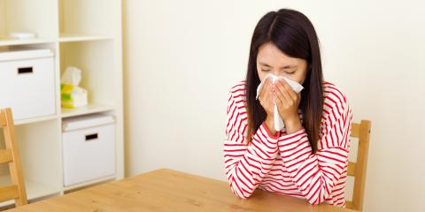 Pollen Plaguing Your Home? 5 Reasons to Call a Residential Restoration Service, Dennis, New Jersey