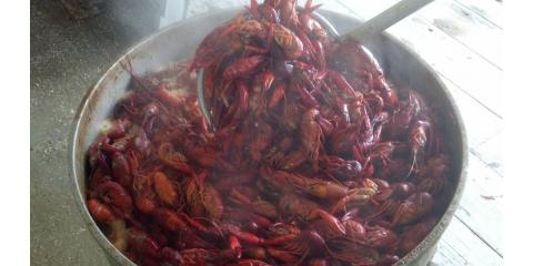 CRAWFISH are here!!, Bon Secour, Alabama