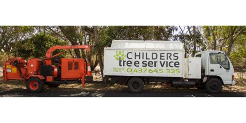Tree Care Experts Explain How to Find the Best Tree Service Company, York, South Carolina