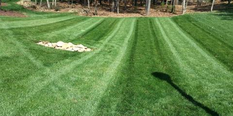 Treat Your Lawn With Pre-Emergent and Fertilizer Now for Weed Control, Denver, North Carolina