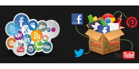 Loyal 9 Marketing, LLC, Marketing, Services, Garfield, New Jersey