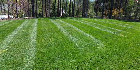 How to Keep Your Lawn Healthy This April, Catawba Springs, North Carolina