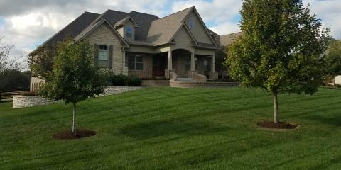 4 Benefits of Lawn Treatments, Lexington-Fayette, Kentucky