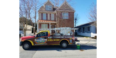 Algae & mold stains on your siding & roof?, Fenwick Island, Delaware