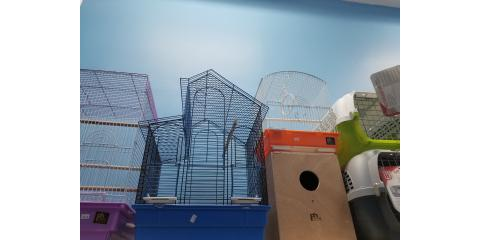 birds cages and more , Manhattan, New York