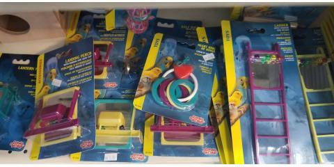 toys for your lovely birds, Manhattan, New York
