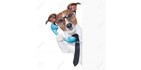 Passionate for pets? Want to save on insurance? Call State Farm for a quote and they will donate $8 to our cause!, Stratford, Connecticut