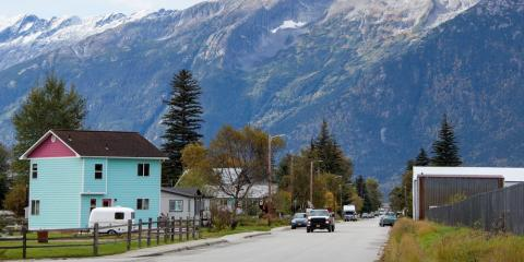 How to Get Back to Tree Service During Spring, Anchorage, Alaska