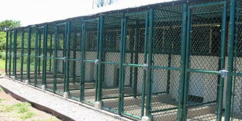 3 Considerations When Building a Kennel for Your Dog, Ewa, Hawaii