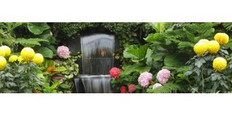 AAA Plantscapes Hawaii, Landscape Design, Services, Honolulu, Hawaii