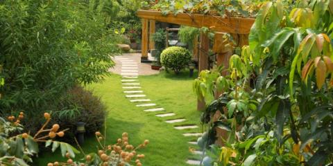 Hire 6 Reasons Lawn Care For All Your Tree Service Needs, West Chester, Ohio