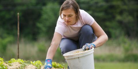 3 Important Benefits of Mulching Your Garden , Scottsville, New York
