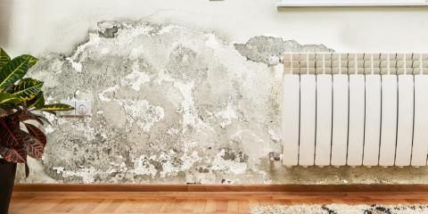 4 Warning Signs of Water Damage, Honolulu, Hawaii