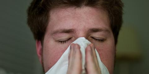 ENTcare Doctors Explain 3 Ways Seasonal Allergies Can Affect Your Quality of Life, Dothan, Alabama