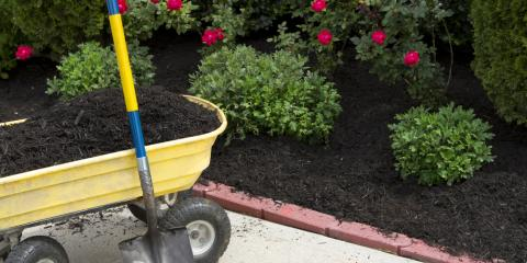3 Key Benefits of Mulching , Medary, Wisconsin