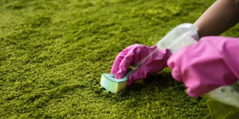 The Best Tips for Cleaning 5 Common Carpet Stains, Lahaina, Hawaii