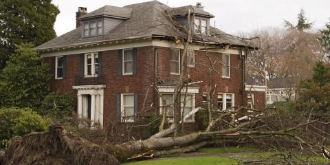 What Restoration Services Might I Need During Hurricane Season?, Dennis, New Jersey