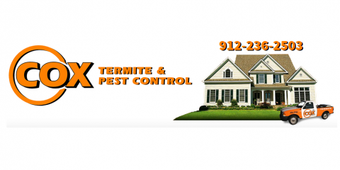 Easy Ways Homeowners Can Practice Proper Pest Control, Garden City, Georgia
