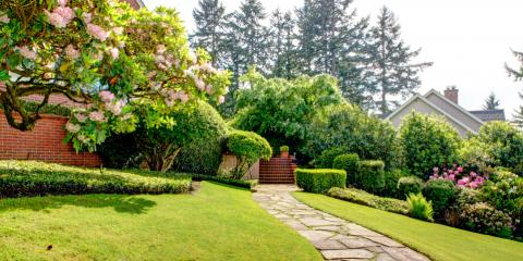 5 Benefits of Adding Trees & Shrubs to Your Property, Grant, Nebraska