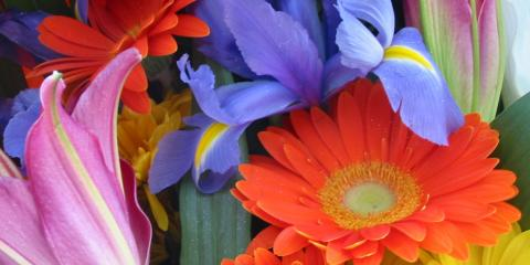 Discover The Meanings Behind The Blooms at Local Florist Kreations by Karen, Lexington-Fayette, Kentucky