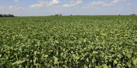 Why Customers Choose Homestead Land Company for Farm Sales, Beatrice, Nebraska