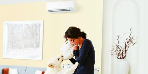 Remove Your Home Allergies with Mitsubishi Electric® Systems, ,