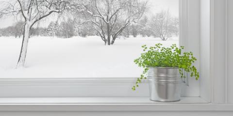 5 Wintertime Pest Control Concerns for St. Louis Residents, St. Charles, Missouri