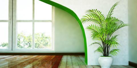 7 Tropical Plants to Grow Indoors , Kihei, Hawaii
