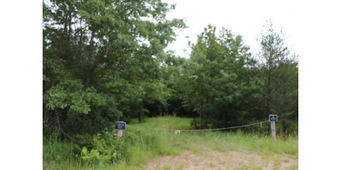 39.4 Acres- Black Creek Road, Fairchild, Black River Falls, Wisconsin