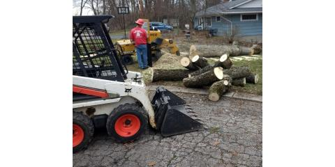 Winter Tree Removal and Lot Clearing!, Butler, Ohio