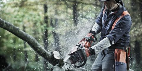 Storm Cleanup is a Breeze with Safe, Careful Chainsaw Use, Whiteville, Arkansas