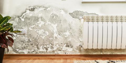 How Your HVAC System May Be Contributing to Mold Growth, Yonkers, New York