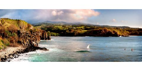 P W C The People Who Clean, Cleaning Services, Services, Honolulu, Hawaii