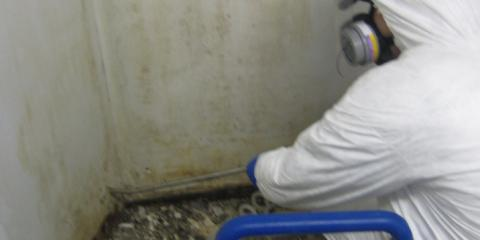 Do You Know What the Pros Check During a Mold Inspection?, Whitefish, Montana