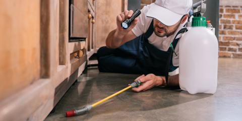 3 Signs You Need to Call a Pest Control Provider, Dayton, Ohio