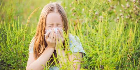 A Guide to Ragweed Allergies in the Fall , West Chester, Ohio
