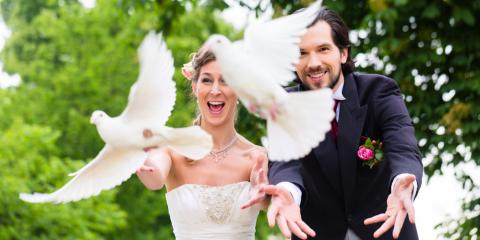 3 Ways to Ensure Doves Stay Safe at Your Wedding , Covington, Kentucky