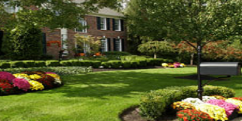 4 Simple Summer Lawn Care Tips , Hinesville, Georgia
