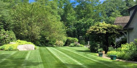 Lawn Aeration Special 2019!, Brookfield, Connecticut