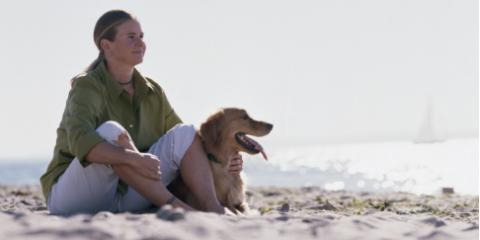 Find the Best Pet-Friendly Accommodations at Sunset Beach Cottage, Clinton, Washington