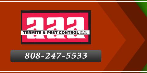 Preserve Your Home With Lasting Termite Treatment Solutions From AAA Termite & Pest Control, Koolaupoko, Hawaii